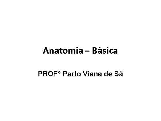 Curso Online de Anatomia - Básica