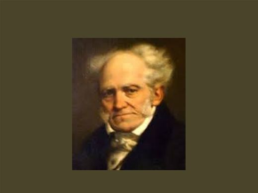 Curso Online de Literatura, segundo Schopenhauer.