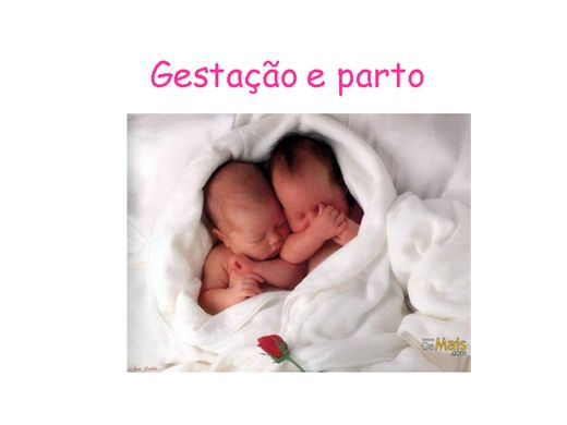 Curso Online de Gestação e parto