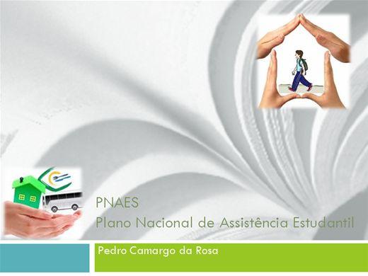 Curso Online de PLANO NACIONAL DE ASSISTÊNCIA ESTUDANTIL