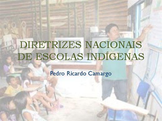 Curso Online de DIRETRIZES NACIONAIS DE ESCOLAS INDÍGENA