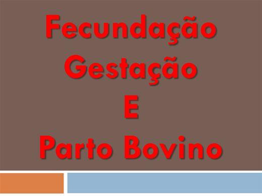Curso Online de Fecundação Gestação e Parto Bovino