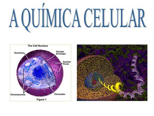 Curso Online de O núcleo e os componentes químicos