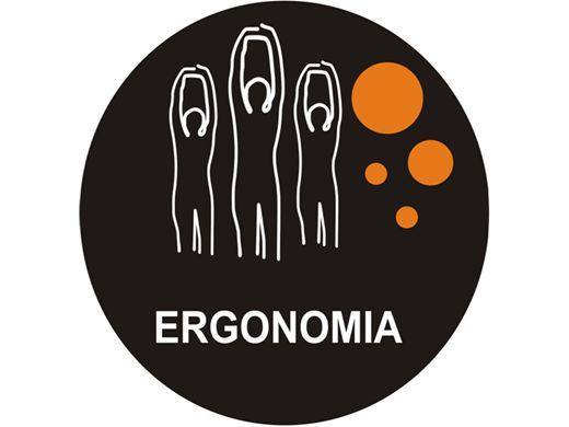 Curso Online de Noções de Ergonomia