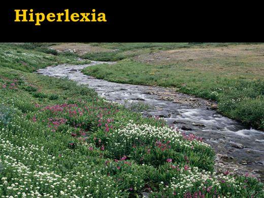 Curso Online de Hiperlexia