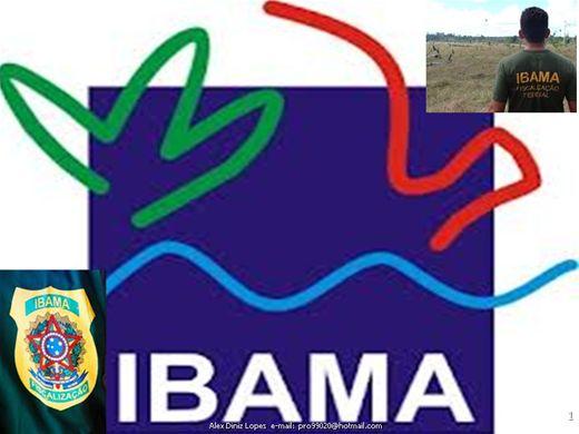 Curso Online de NOÇÕES DE ADMINISTRAÇÃO para o concurso do IBAMA - Modulo II