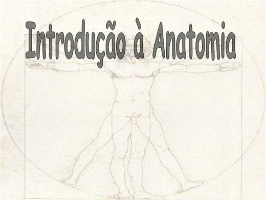 Curso Online de INICIAÇAO A ANATOMIA