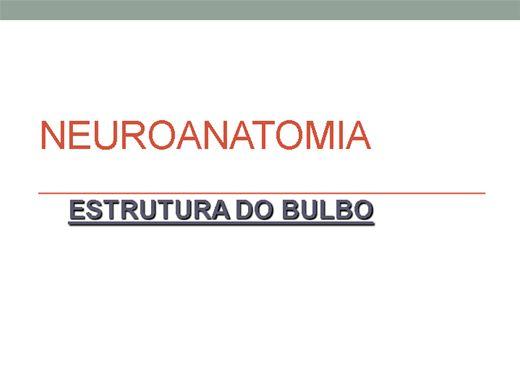 Curso Online de Neuroanatomia bulbo
