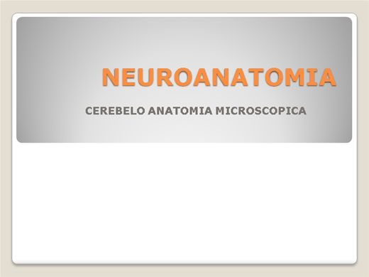Curso Online de Neuroanatomia do cerebelo