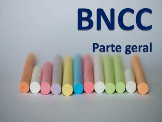 Curso Online de BNCC - noções gerais