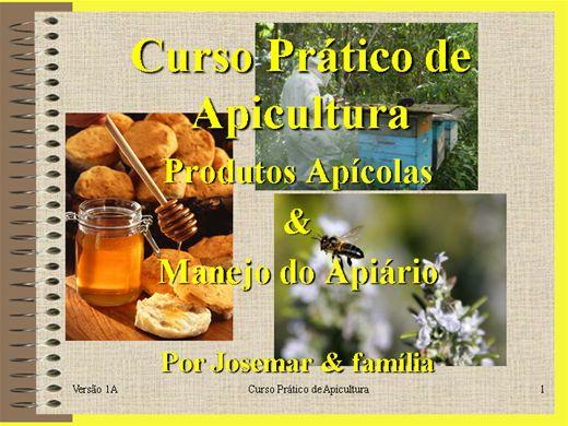 Curso Online de Curso Prático de Apicultura - Criação de Abelhas