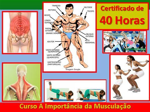 Curso Online de A Importância da Musculação