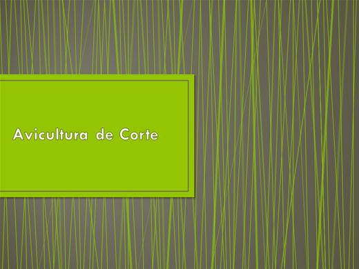 Curso Online de Avicultura de Corte