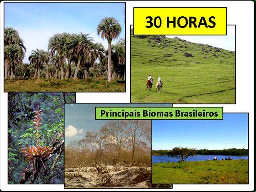 Curso Online de Os Principais Biomas Brasileiro