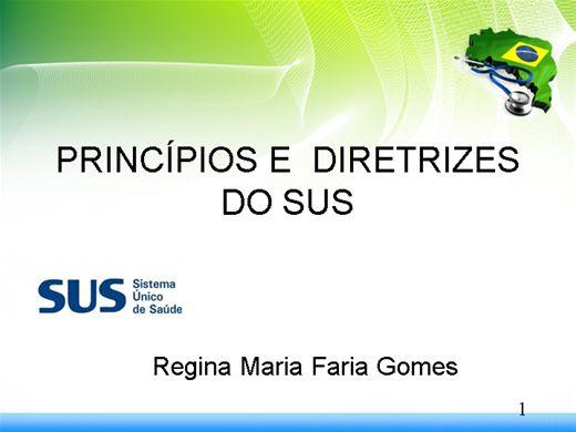 Curso Online de Princípios e Diretrizes Básicas do SUS