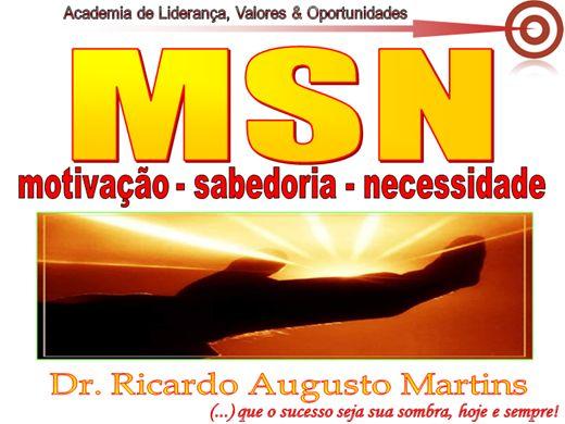 Curso Online de MSN MOTIVAÇÃO SABEDORIA NECESSIDADE