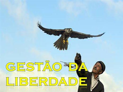 Curso Online de GESTÃO DA LIBERDADE