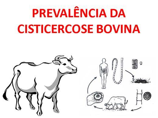 Curso Online de Prevalência da Cisticercose Bovina