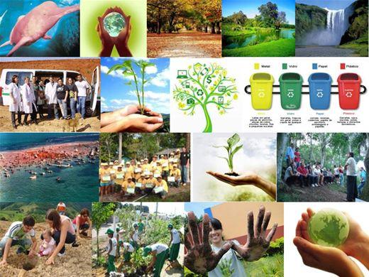 Curso Online de Agentes Ambientais