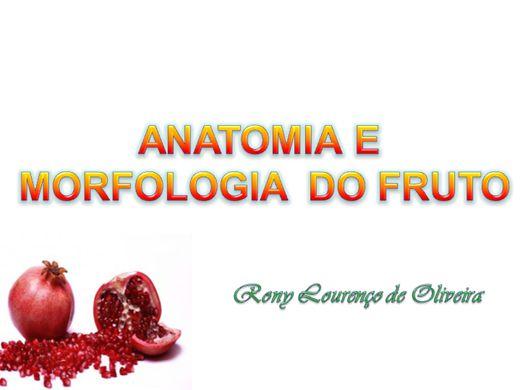 Curso Online de Anatomia e Morfologia do Fruto