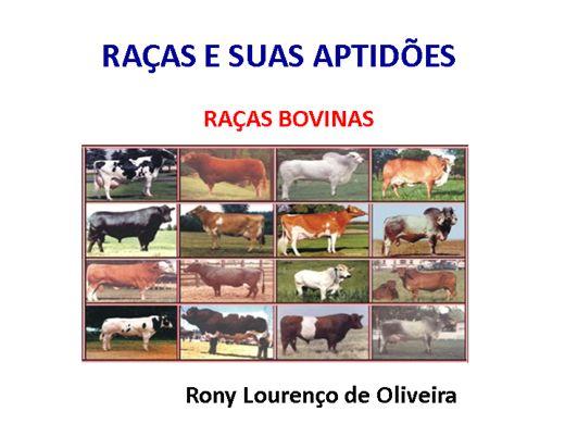 Curso Online de RAÇAS E SUAS APTIDÕES - Raças Bovinas.