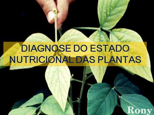 Curso Online de DIAGNOSE DO ESTADO NUTRICIONAL DAS PLANTAS