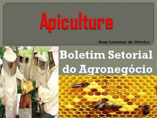 Curso Online de Apicultura - Boletim Setorial do Agronegócio