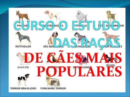 Curso Online de CURSO O ESTUDO DAS RAÇAS DE CÃES MAIS POPULARES