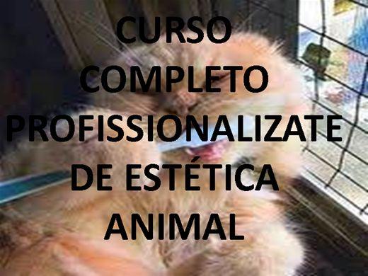 Curso Online de CURSO COMPLETO PROFISSIONALIZANTE DE ESTÉTICA ANIMAL.