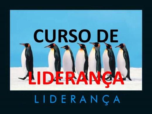 Curso Online de CURSO DE LIDERANÇA