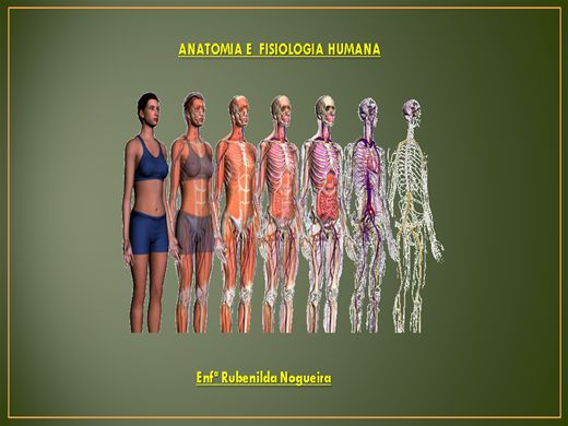 Fisiologia humana online