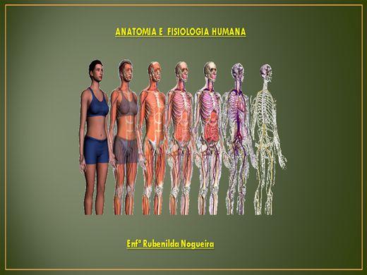 Fisiologia humana online
