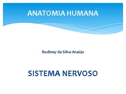 Curso Online de Sistema Nervoso: generalidades e conceitos