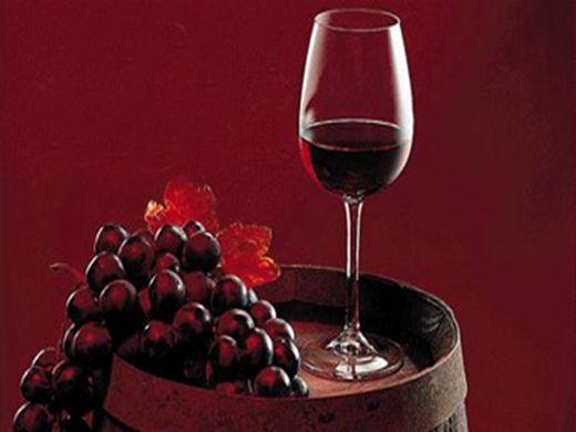 Curso Online de Básico de vinhos