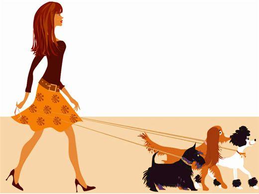 Curso Online de Passeador de Cães