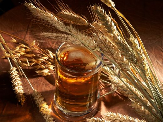Curso Online de Cerveja Artesanal