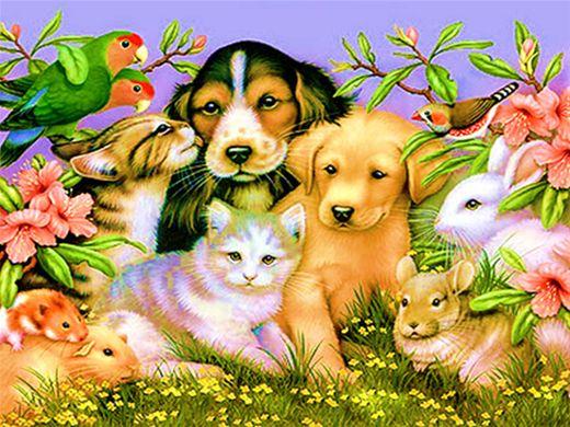 Curso Online de Terapias Naturais em Animais