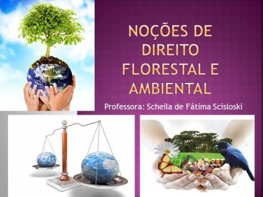 Curso Online de Noções de Direito Florestal e Ambiental