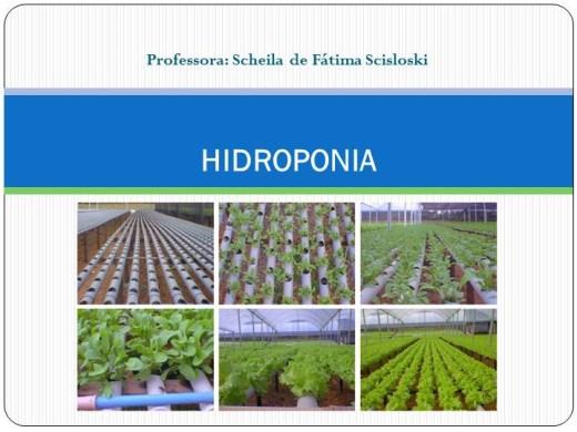 Curso Online de Hidroponia