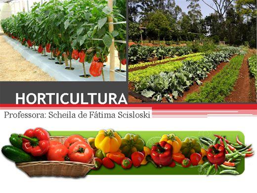 Curso Online de Horticultura Básica