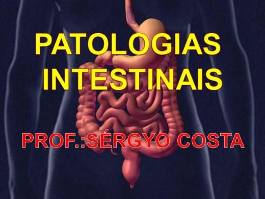 Curso Online de  PATOLOGIAS INTESTINAIS.