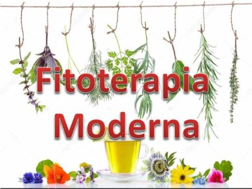 Curso Online de Fitoterapia Moderna