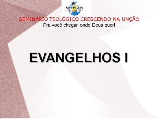 Curso Online de EVANGELHOS I