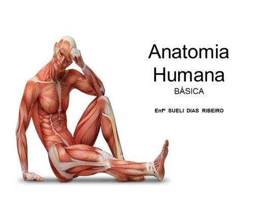 Curso Online de ANATOMIA HUMANA BÁSICA