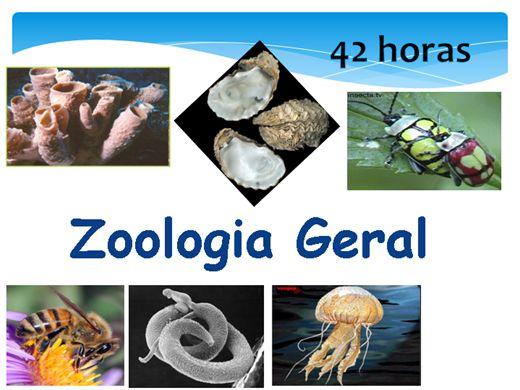 Curso Online de Zoologia Geral