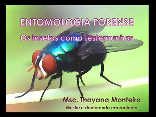 Curso Online de Curso teórico de Entomologia Forense
