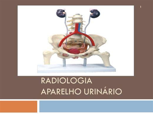 Curso Online de Estudo Radiológico do  aparelho urinário