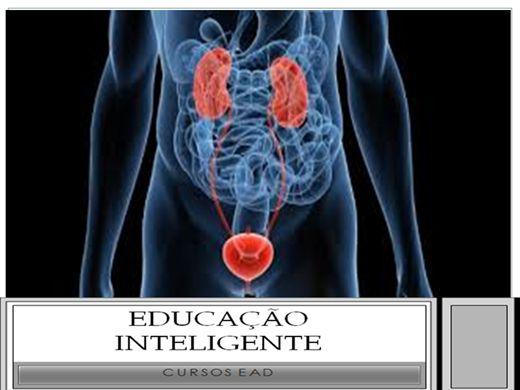 Curso Online de Radiologia - Imaginologia dos rins