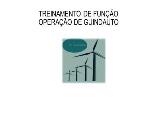 Curso Online de Operação com Guindauto