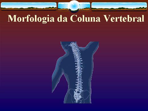 Curso Online de Morfologia da Coluna Vertebral